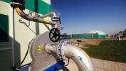 Uskoro prvo kogenerativno postrojenje na biomasu u Srbiji