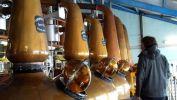 Nusproizvodi viskija mogli bi postati biogorivo