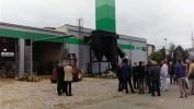 Opštine u Srbiji zainteresovane za toplanu na bio-masu