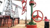 Cijene nafte ponovo u padu